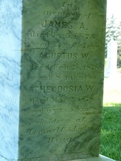 James A. Ring