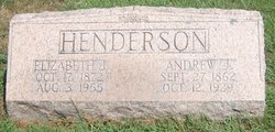 "Elizabeth Jane ""Lizzie"" <I>Hout</I> Henderson"
