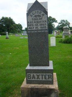 Alice K Baxter