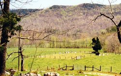Blevins - Dobbs Cemetery