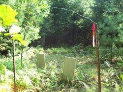 Honeycutt - Hampton Cemetery