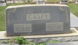 Andrew Jackson Casey