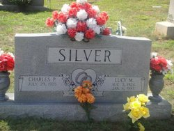 Charles P Silver