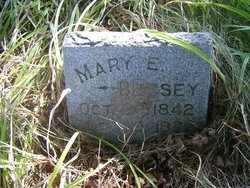 Mary E <I>Luce</I> Bessey