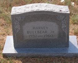 Harvey Bull Bear, Jr