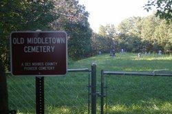 Leuins Point Cemetery