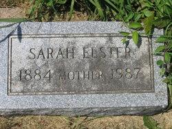 Sarah <I>Olson</I> Elster