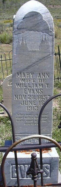 Mary Anne <I>Lloyd</I> Evans