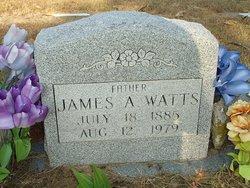 James A Watts