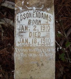 Loson F. Adams