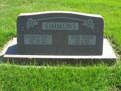 David Barton Simmons