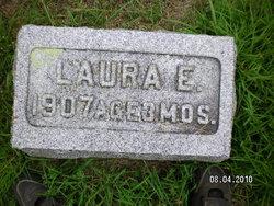 Laura E Johnson