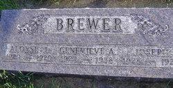 Aloyse L Brewer