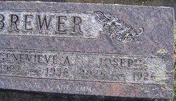Joseph Brewer