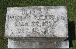 Olivia E Lewis