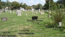 William J. M. Brown