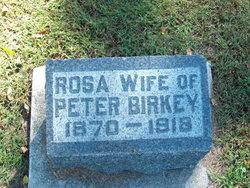 """Rosina E """"Rosa"""" <I>Knapp</I> Birkey"""