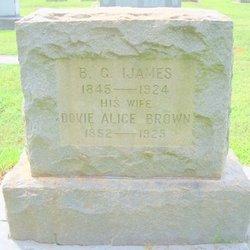 Dovie Alice <I>Brown</I> Ijames