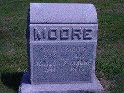 David T Moore