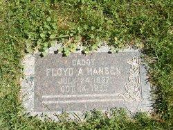 Floyd Andrew Hansen