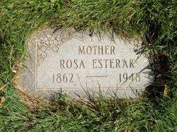 Rosa <I>Zrmhal</I> Esterak