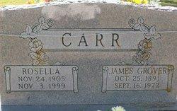 Rosella R <I>Foster</I> Carr