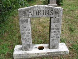 Aaron Ballard Adkins