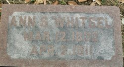 Ann S Whitsel