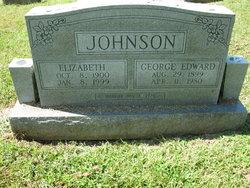 Laura Elizabeth <I>Parks</I> Johnson