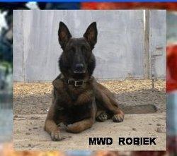 Robiek (MWD) Dog