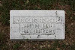 Mary Sue Reasons