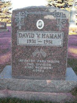 David V. Haman