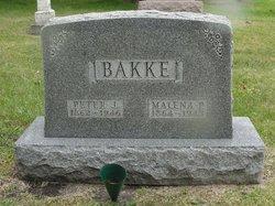 Malena P Bakke