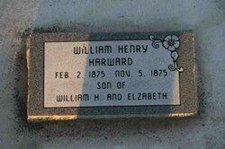 William Henry Harward