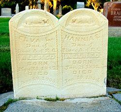 "Hannah Elmira ""Hannia"" Allred"