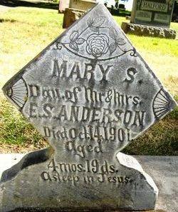 Mary Susan Anderson