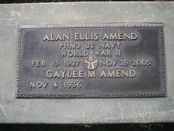 Alan Ellis Amend
