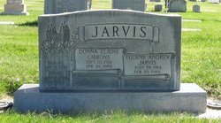 Donna Elaine <I>Gibbons</I> Jarvis