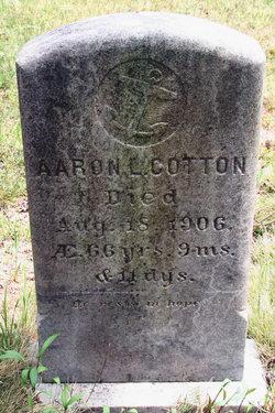 Aaron Look Cotton