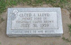 Lloyd Brown