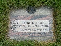 Ilene G Tripp