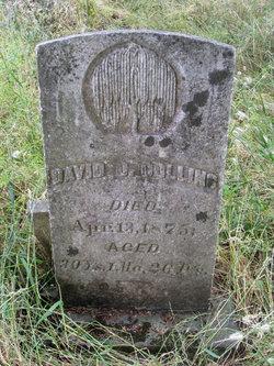 David O. Collins