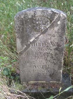 Philip W. James
