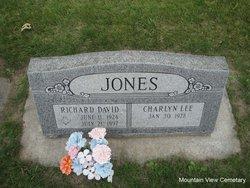 Richard David Jones