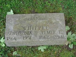 Sophronia Whipple