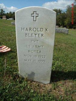 Pvt Harold K Bleyer