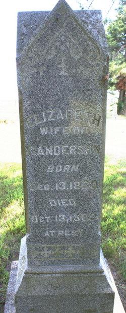 Elizabeth <I>Hosmann</I> Anderson