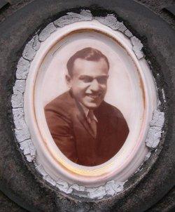 Harry Rogol