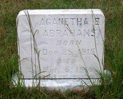Aganetha E Abrahams