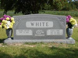 Cecil Lane White